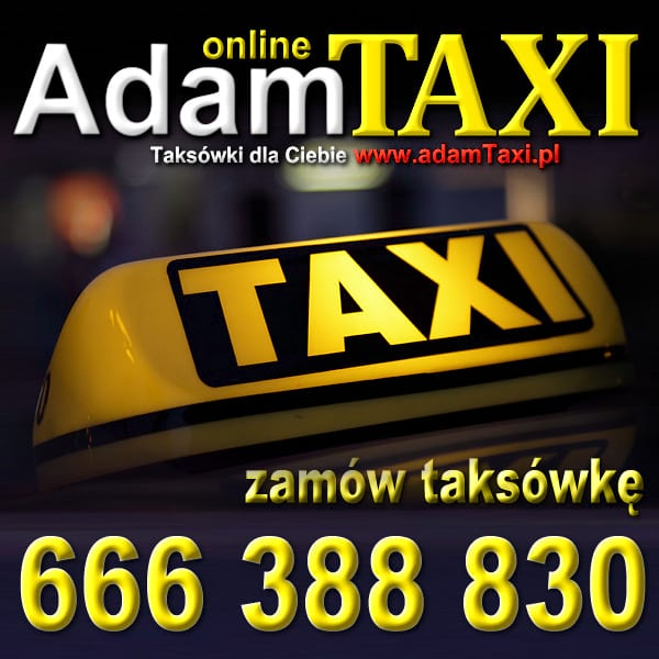 AdamTaxi airport